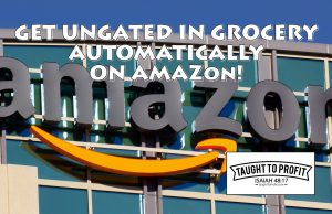 Amazon Seller Get Automatically Ungated To Sell Grocery And Used Learning Toys!