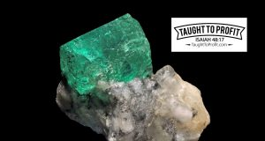 Does The Emerald Lose Its Beauty For Lack Of Admiration? Success Should Not Be Confused With Materialism!