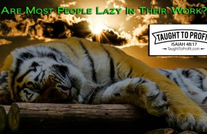 Are Most People Lazy In Their Work? Are You Lazy? You Might Be And Not Realize It!